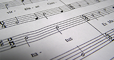 Algemene Muziekale Vorming