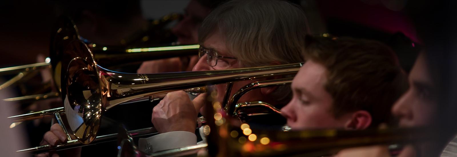 Verenigingsconcert 2015