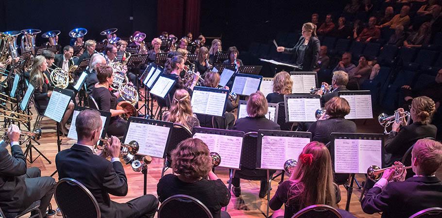 veluws-muziekspektakel-2016-n